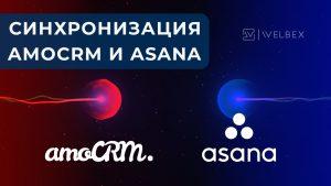 амосрм, asana, amocrm, it решение для бизнеса